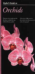Orchid Stock Photos & book by judywhite | Taylor's Guide to Orchids